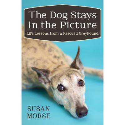 The Dog Stays in the Picture: Life Lessons from a Rescued