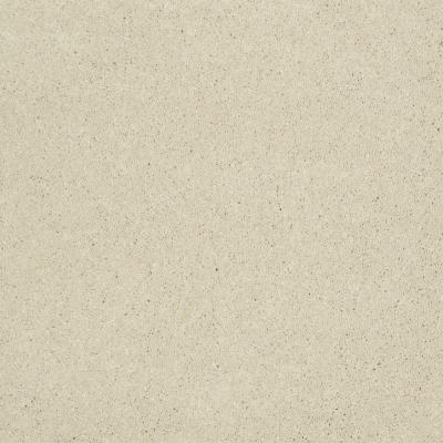 Home Decorators Collection Cressbrook III (S) - Color Pearl 12 ft. Carpet