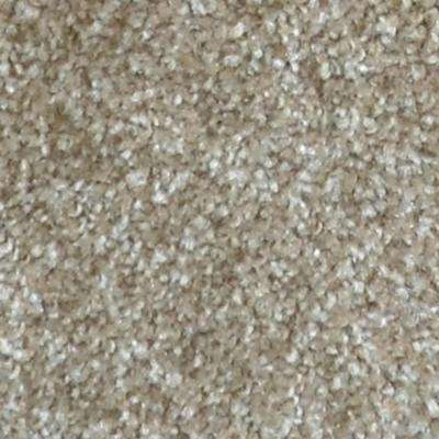 Carpet Sample - Harvest II - Color Ramsey Texture 8 in. x 8 in.
