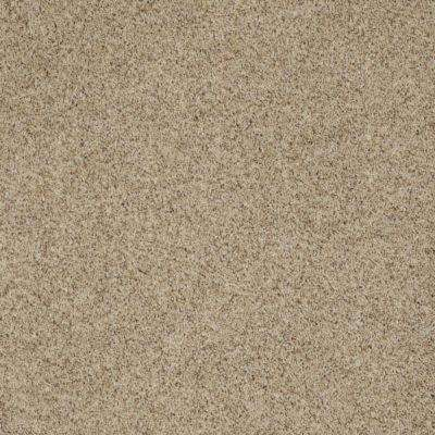 Carpet Sample - Impeccable II - Color East Coast Texture 8 in. x 8 in.