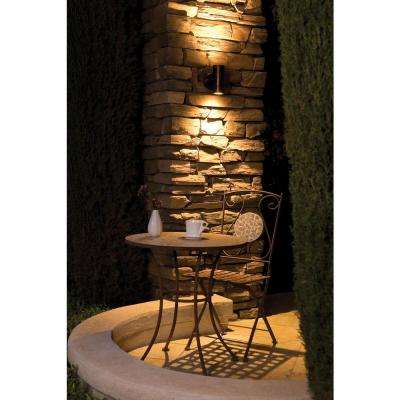 Myra 2-Light Bronze Metal Outdoor Sconce with Clear Glass Shade