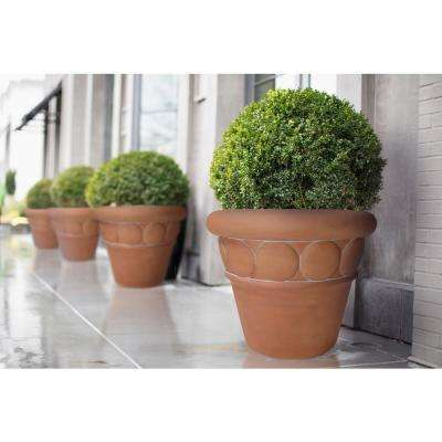 32 in. Dia White Washed Terracotta Composite Commercial Planter (4-Pack)