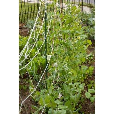 5 ft. x 8 ft. Sturdy Garden Trellis