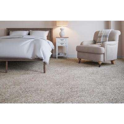 Superiority I - Color Dream World Texture 12 ft. Carpet