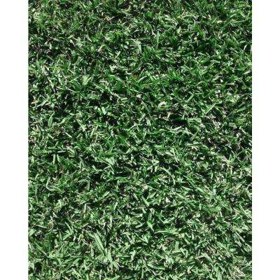 Play Sod 1600 Total sq. ft. Ship to FL and SC (Quantity of 1= 4 Pallets Delivered to Customer)