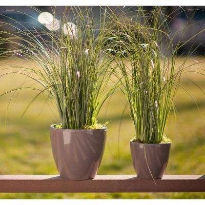 DECO 7.9 in. Lavender Plastic Self Watering Planter