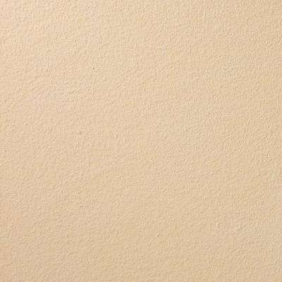 13 in. x 19 in. #SU141 Bleached Mesquite Suede Specialty Paint Chip Sample
