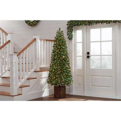 6.5 ft Blanton Douglas Fir Pre-Lit Potted Artificial Christmas Tree with 150 Clear Lights