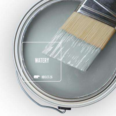 Home Decorators Collection HDC-CT-26 Watery Paint