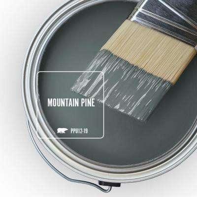 PPU12-19 Mountain Pine Paint