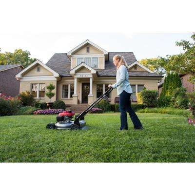 21 in. Gas Push Walk Behind Manual Side Discharge Lawn Push Mower