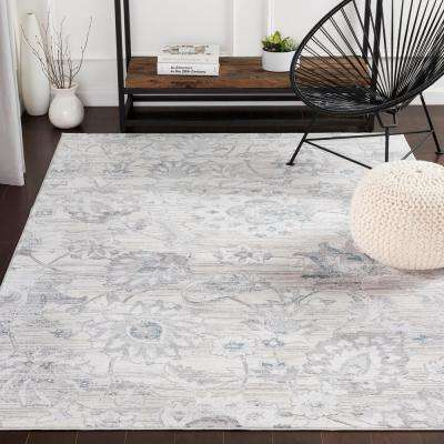 Sabri Silver/Blue 2 ft. x 3 ft. Distressed Area Rug