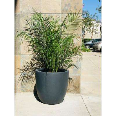 17 in. Tall Charcoal Lightweight Concrete Round Modern Seamless Outdoor Planter