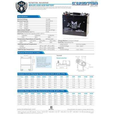 Series 24 75 Ah 12-Volt Sealed Lead Acid (SLA) AGM Rechargeable Marine Post Battery