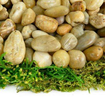 0.20 cu. ft. 3/8 in. - 5/8 in. 5 lbs. Small Yellow Polished Rock Pebbles for Planters, Gardens, Aquariums and More