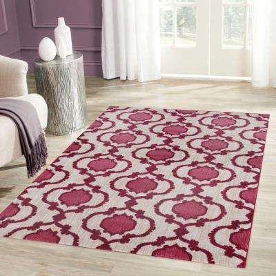 Modern Moraccan Trellis Pink/Red 8 ft. x 10 ft. Soft Area Rug