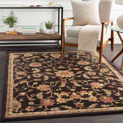 Sabin Black 2 ft. x 3 ft. Indoor Area Rug