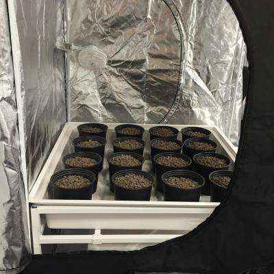 4 ft. L x 4 ft. W x 7 ft. H Hydro Grow Room Deluxe Complete System