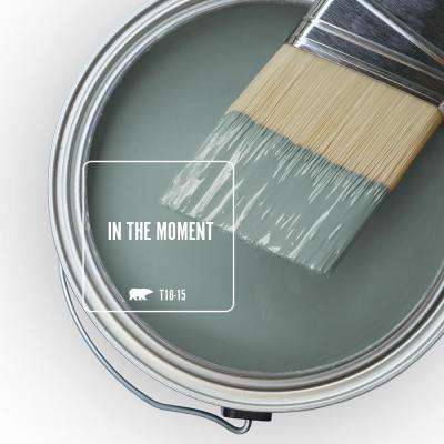 T18-15 In The Moment Paint