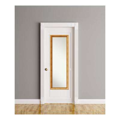 Townhouse Gold wood 17 in. W x 51 in. H On The Door Mirror