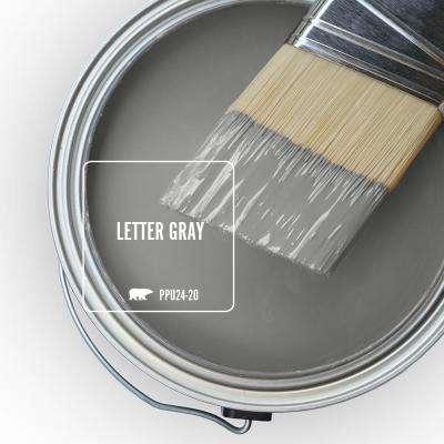 PPU24-20 Letter Gray Paint