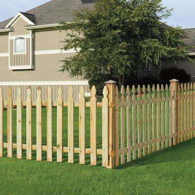 3/4 in. x 3-1/2 in. x 42 in. Pressure Treated Pine French Gothic Fence Pickets (6-Pack)
