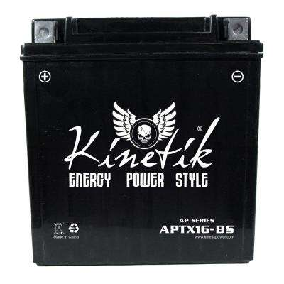 Dry Charge AGM 12-Volt 14 Ah Capacity D Terminal Battery