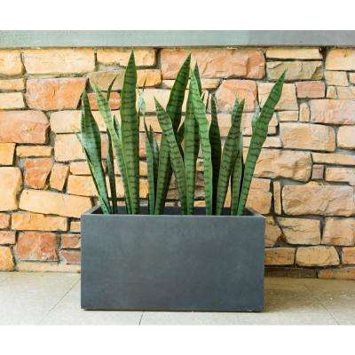 Large 31 in. L Charcoal Lightweight Concrete Modern Long Low Outdoor Planter