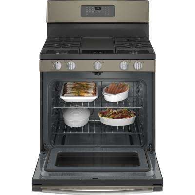 30 in. 5.0 cu.ft. Gas Range with Self-Cleaning Oven in Slate