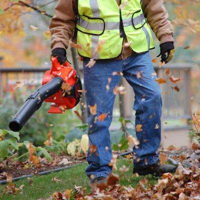 170 MPH 453 CFM 25.4 cc Gas 2-Stroke Cycle Handheld Leaf Blower