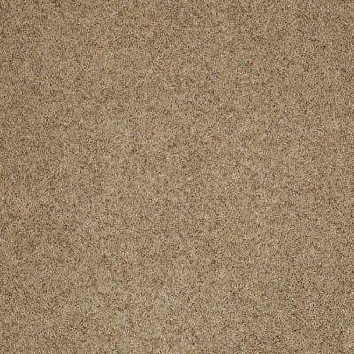 Carpet Sample - Impeccable I - Color Morning Sunshine Texture 8 in. x 8 in.