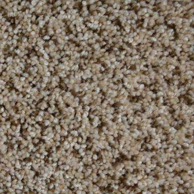 Carpet Sample - Captain - Color New Castle Texture 8 in. x 8 in.