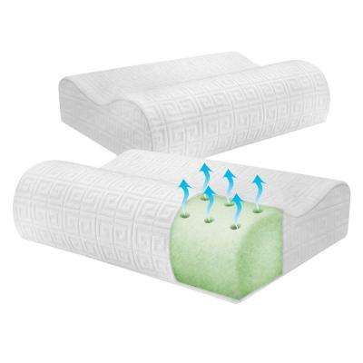 Greek Key Classic Contour Memory Foam Pillow (2-Pack)