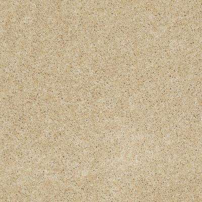 Carpet Sample - Cozy - Color Gilt Edge Texture 8 in. x 8 in.
