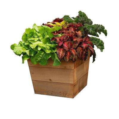 13 in. x 13 in. x 21 in. Patio Wood Planter
