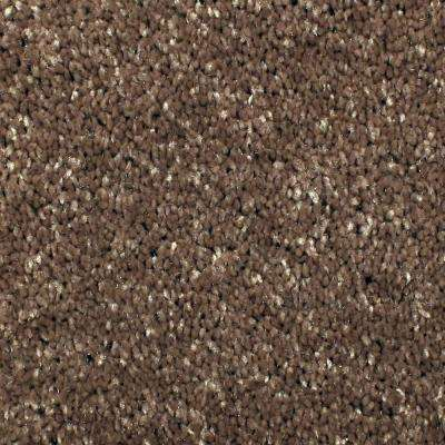 Carpet Sample - Gracious Manner II - Color Foxtrot Texture 8 in. x 8 in.