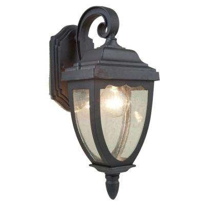 Aeolia 1-Light Black Outdoor Sconce