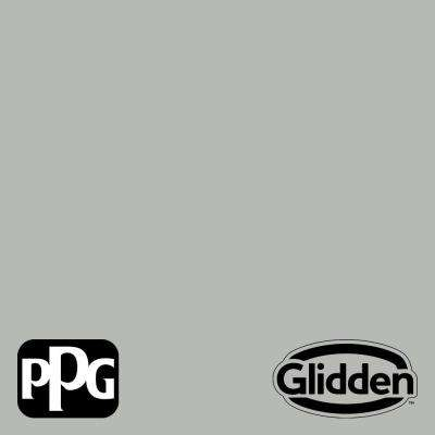Gray Stone PPG1009-4 Paint