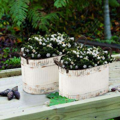 Antiqued White Oval Galvanized Planters (Set of 2)