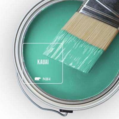 P430-4 Kauai Paint