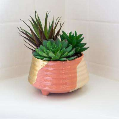 5.25 in. 3-Tone Blush Ceramic Footed Planter