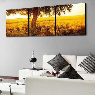 "24 in. x 72 in. ""Africa Sunrise"" Printed Wall Art"