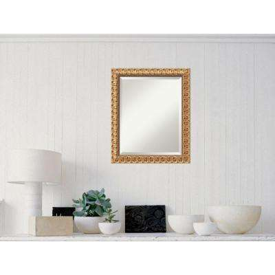 Florentine Gold Wood 20 in. W x 24 in. H Traditional Framed Mirror