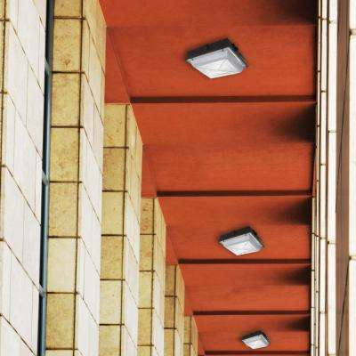 120-277-Volt Square Canopy Bronze Integrated LED Outdoor Flush Mount Light with 2200 Lumen