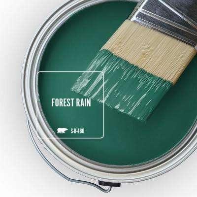 S-H-480 Forest Rain Paint