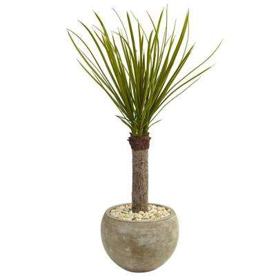 Indoor Yucca Artificial Tree in Sand Colored Bowl