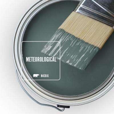N430-6 Meteorological Paint