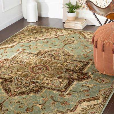 Sora Sage 8 ft. 10 in. x 12 ft. 9 in. Oriental Area Rug