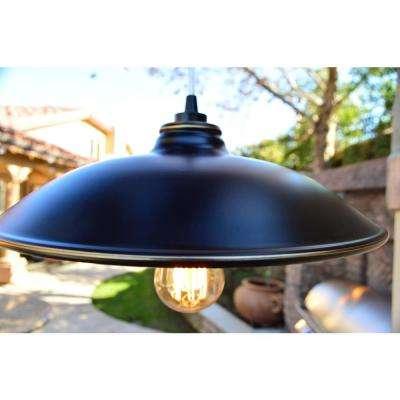 Jayden 1-Light Imperial Black Outdoor Hanging Light