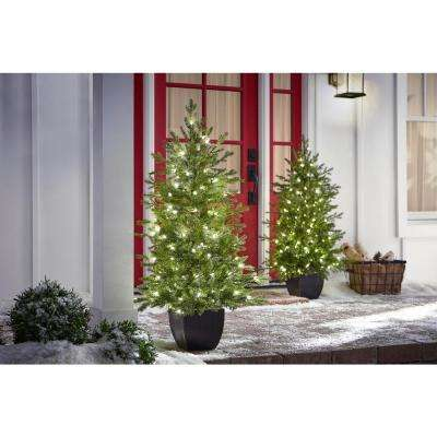 4 ft. Pre-Lit Warm White LED Potted Artificial Christmas Tree (Set of 2)